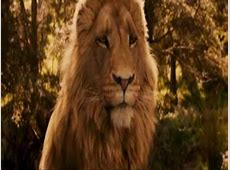 Aslan Lion YouTube