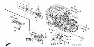 2002 Honda Odyssey Alternator Belt Diagram