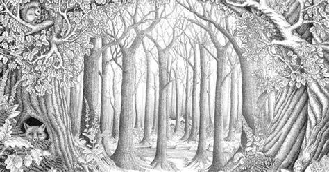 enchanted forest  ellfideviantartcom  atdeviantart