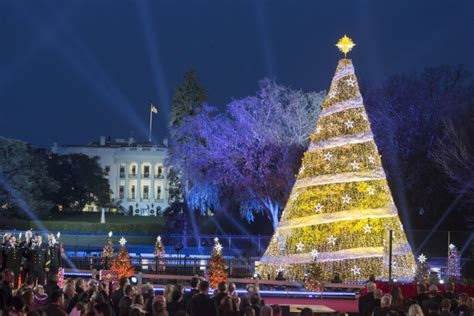 visiting national christmas tree at night photos of the week at the white house the white house