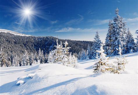 arri 232 res plans foret hiver 2015 maximumwall
