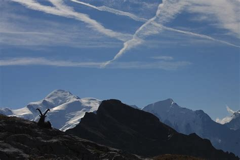 8 mont blanc tnt tour du mont blanc guides gervais mont blanc