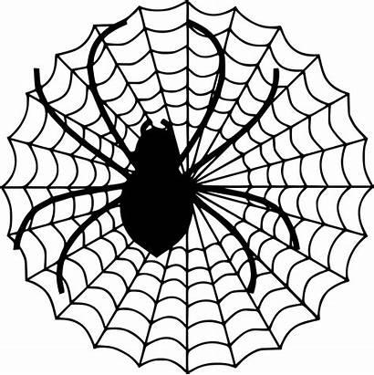 Spider Svg Icon Onlinewebfonts