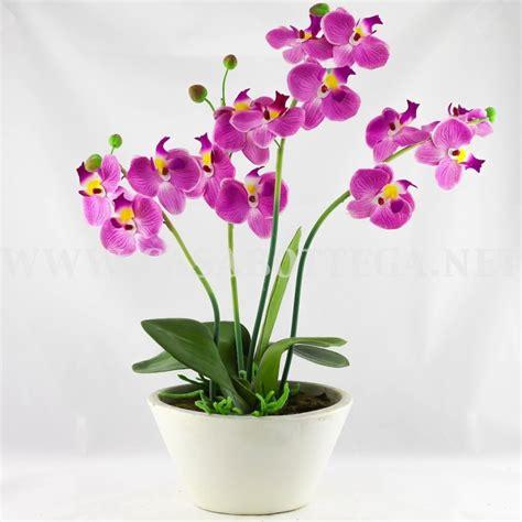 vaso per orchidea orchidea in seta con vaso bianco ebay