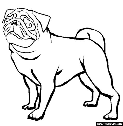 Pug Coloring Pages to Print