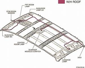 Rear Light Wiring Diagram