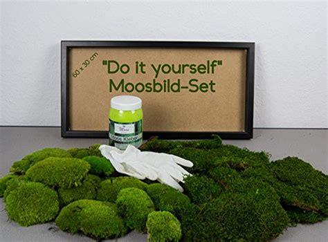 moosbild selber machen diy moosbild selber machen wandbilder selber kleben moosbilder selber gestalten do it
