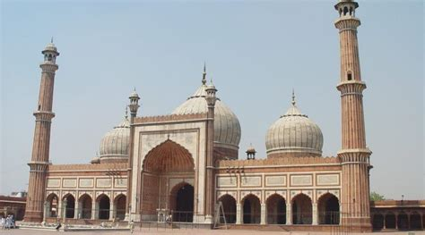 days  delhi travel itinerary   local