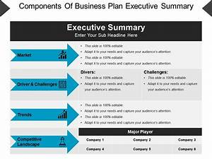 Components Of Business Plan Executive Summary Powerpoint