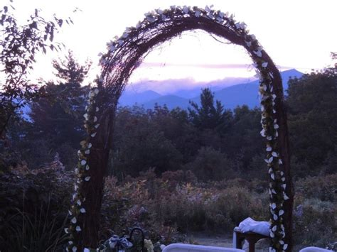 17 Best Images About Grapevine Arbor On Pinterest