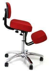 1000 images about ergonomic chairs on