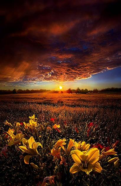 Sunset Phil Koch Nature Sunrise Horizons Places