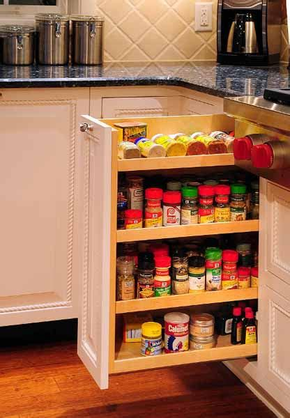 spice cabinet organizer shelf modern kitchen accessories for spices storage