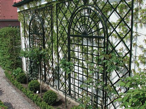 Trellis : Climbing Rose Supports Make Fabulous Features For Smaller