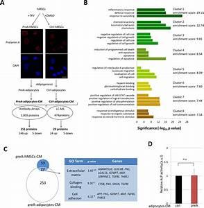 Secretome Analysis Of Prea