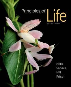 Principles Of Life  9781464109478