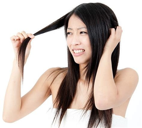 Cause Hair by Find Out What Can Cause Hair Loss With 10 Things You Do