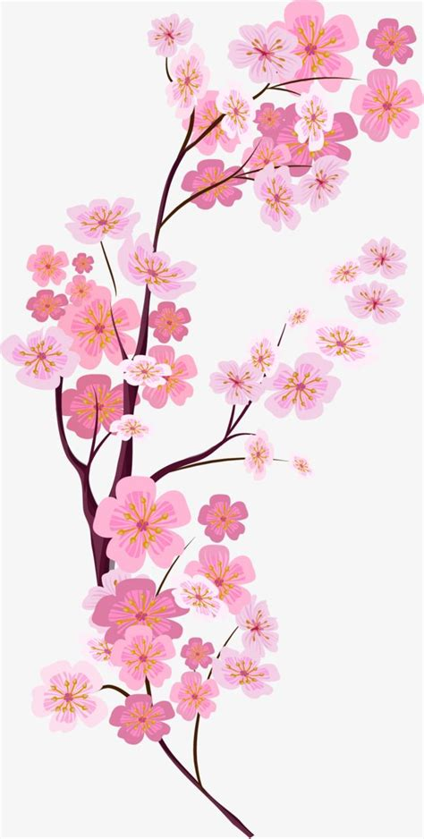Vector Painted Pink Cherry Blossoms Cherry blossom art