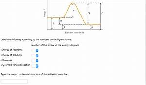 Which Of The Following Combinations Of Reactants Could The
