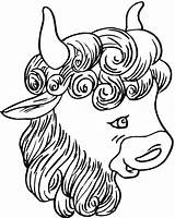 Bison Buffalo Coloring Pages Head Drawing Animals Getdrawings sketch template