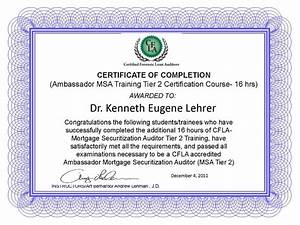 Lehrer securitization audit certificates for Forensic audit of mortgage loan documents