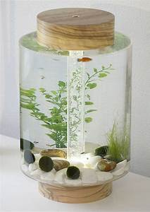Petit Aquarium Design : 39 norom 39 a minimalist cylindrical shaped aquarium by ~ Melissatoandfro.com Idées de Décoration