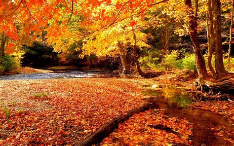 hd autumn beautiful lake hd wallpapers cool