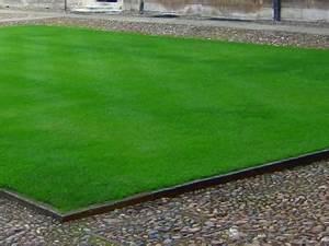 Gazon Pour L Ombre : au jardin la semaine du beau gazon ~ Premium-room.com Idées de Décoration