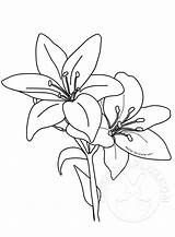 Lilies Easter Printable Template sketch template
