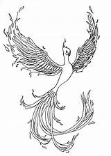 Coloring Tattoo Phoenix Pages Template Sketch sketch template