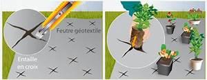 Bache Géotextile Pour Gravier : cr er un jardin sur gravier jardinage ~ Dode.kayakingforconservation.com Idées de Décoration