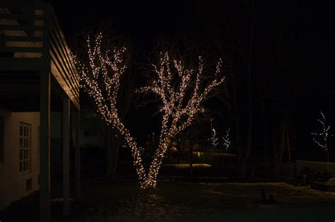 people who put up christmas lights iceland 39 s christmas trees of light guide to iceland