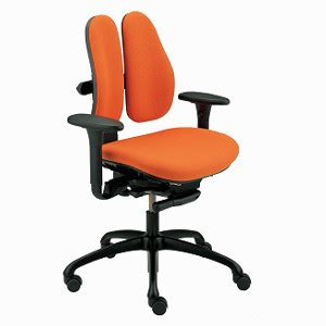 Grahl Duo Back Chair by Grahl Type 11 Duo Back Standard Chair Easy Ergonomics