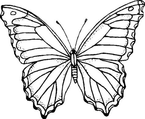 immagini colorate bellissime immagini da colorare farfalle pagina 8 di 10 cartoni