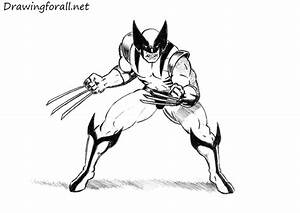 How To Draw Wolverine Drawingforallnet