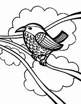 Robin Coloring Pages Bird Draw Wires Birds sketch template