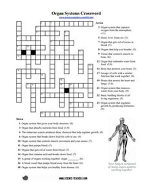 organ systems crossword puzzle worksheet
