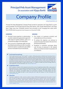 business profile examples buyerpricercom places to With information technology company profile template