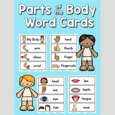 Body Parts Pictureword Cards Prekinders
