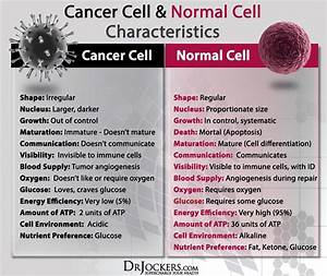 The Difference Between Normal And Cancer Cells