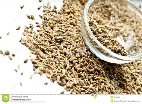 Anise Seeds Royalty Free Stock Images Image 9158269