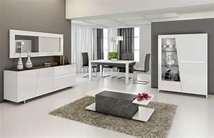 Deco cuisine noir blanc gris for Deco cuisine avec salle a manger blanc et gris