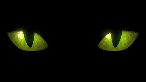 Animated Eye Wallpaper - cat blinking loop animation of cat blinking
