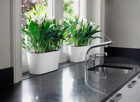 black kitchen sinks countertops  faucets  ideas