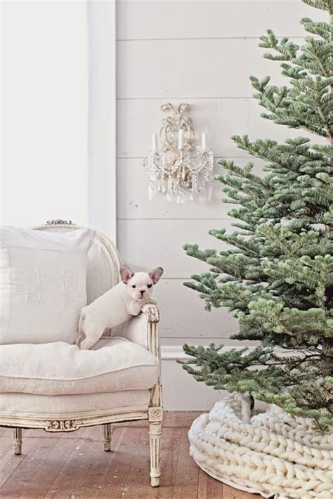 Winter's Little Known Myth + Exquisite Christmas