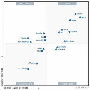 seven years as a leader in web content management platforms With document management system gartner