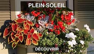 Jardiniere Fleurie Plein Soleil : kit jardini re sur mesure coclicoh ~ Melissatoandfro.com Idées de Décoration