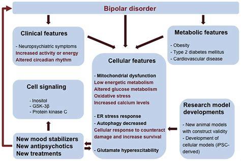 frontiers molecular mechanisms  bipolar disorder