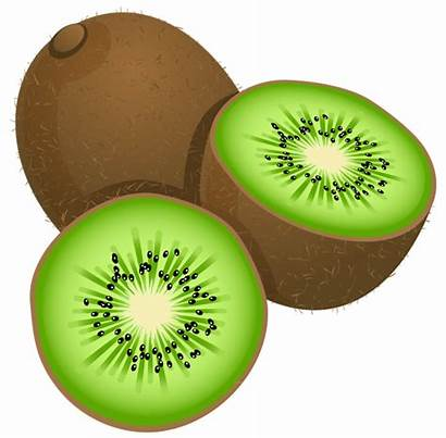 Kiwi Fruit Clipart Kiwifruit Bird Frut Clip