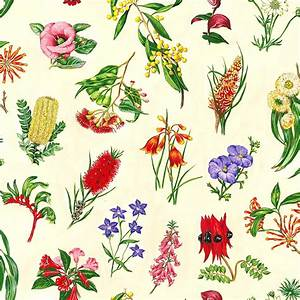 Native Australian flowers quilt fabric by Nutex